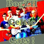 BogZH Celtic Cats ! logo